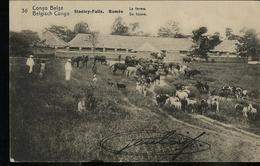 Carte Obl. N° 42. Vue 36. Stanley-Falls . Romée  La Ferme ; Obl. Boma 23/11/19 .. - Ganzsachen