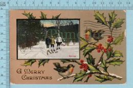 "CPA Voyagé 1912 -A Merry Christmas "" Ski-ing, Bird, Feuille Gui   - Stamp CND #104 - Non Classés"