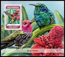 MOZAMBIQUE 2018 MNH** Colibris Kolibris S/S - OFFICIAL ISSUE - DH1826 - Hummingbirds