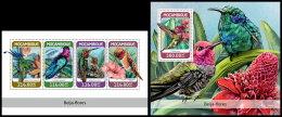 MOZAMBIQUE 2018 MNH** Colibris Kolibris M/S+S/S - IMPERFORATED - DH1826 - Hummingbirds