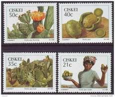 D90819 Ciskei South Africa 1990 CACTII FOOD MNH Set - Afrique Du Sud Afrika RSA Sudafrika - Ciskei