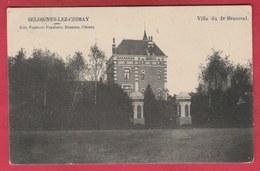 Seloignes-lez-Chimay - Villa Du Dr Henseval - 1908 ( Voir Verso ) - Momignies