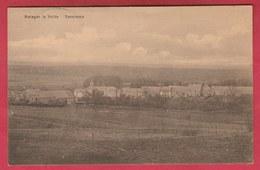 Matagne La Petite - Panorama ... Du Village ( Voir Verso ) - Doische
