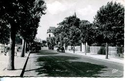 N°63114 -cpsm Cabourg -avenue De La Mer- - Cabourg