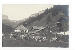 20233 - Lenk Jfigenalp Vaches - BE Berne