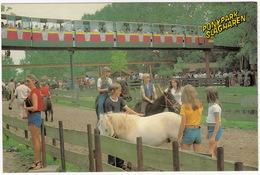 Ponypark Slagharen - PONY'S & MONO RAIL  -  (Holland) - Pays-Bas