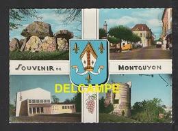 DF / 17 CHARENTE MARITIME / MONTGUYON / LE DOLMEN - LA PLACE - LA SALLE DES FÊTES - LA TOUR - ARMOIRIES / CIRCULÉE 1966 - Other Municipalities