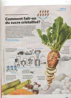 Pafe Coop Theme Sucre De Betterave - Zeitungen