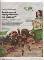 Page Coop Theme Mygale Araignee - 1950 à Nos Jours