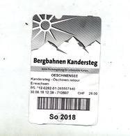 Ticket Funiculaire Suisse - Chemins De Fer