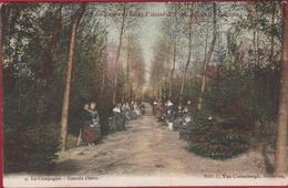 DEINZE Pensionat Des Soeurs Saint Vincent De Paul - La Campagne - Grande Drève 1907 Ingekleurd (In Zeer Goede Staat) - Deinze