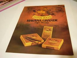 ANCIENNE PUBLICITE CIGARE HAVANA DRANDE DE BARBUDOS 1979 - Tabac (objets Liés)
