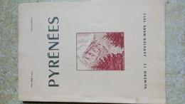 PYRENEES - N° 13 JANVIER MARS 1953 De La Page 1 à 80 REVUE TRIMESTRIEL - Musée Pyrénee Lourdes - Tourisme & Régions
