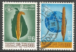 Ceylon. 1966 International Rice Year. Used Complete Set. SG 515-516 - Sri Lanka (Ceylon) (1948-...)