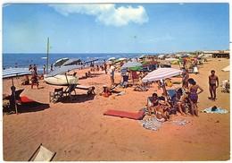 FREGENE LA SPIAGGIA 1963 FG VG - Fiumicino