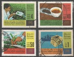 Ceylon. 1967 Centenary Of Ceylon Tea Industry. Used Complete Set. SG 526-29 - Sri Lanka (Ceylon) (1948-...)