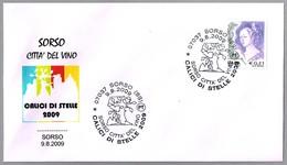 CALICI DI STELLE 2009 - CITTA DEL VINO. Vino - Wine. Sorso, Sassari, 2009 - Vinos Y Alcoholes