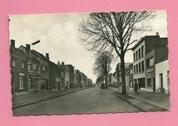 C.P. Wilrijk = Moretus Lei - Antwerpen