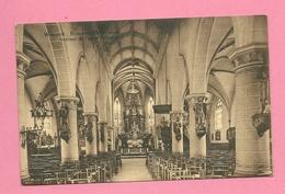 C.P. Wilrijk =  St. BAVO  Kerk  : Binnenzicht - Antwerpen