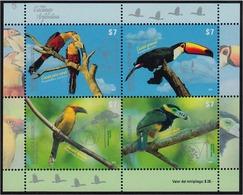 Argentina - 2015 - Oiseaux - Toucans D'Argentine - Argentina