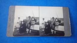 Photo Stéréoscopique Chiens Famille Aromanches - Stereoscopic