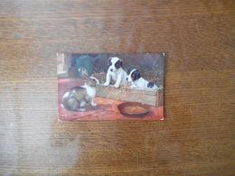 AMONG THE BUNNIES POSCARD N° 9539 - Perros