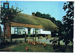 Wuustwezel - Oude Hoeve Op De Veldvoort - Wuustwezel