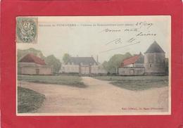 ENVIRONS DE PITHIVIERS                    Le Chateau De Denainvilliers            45 - Pithiviers