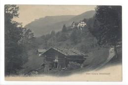 20269 -  Grindelwald Hôtel Victoria Nicolet Pascal, Bienne-Grindelwald 1917 - BE Berne