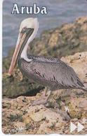TARJETA DE ARUBA DE UN PELICANO (BIRD-PAJARO) - Aruba