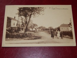 HIVES  - LA-ROCHE-EN-ARDENNE  -  Route De Beaulieu - La-Roche-en-Ardenne