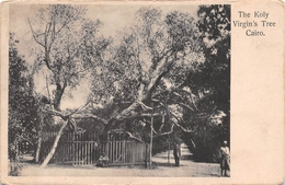 ¤¤   -  EGYPTE   -  LE CAIRE   -  The Koly Virgin's Tree   -  ¤¤ - Cairo
