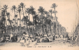 ¤¤   -  EGYPTE   -  LE CAIRE   -  Dates Market  -  Le Marché Aux Dattes   -  ¤¤ - Cairo
