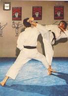 KARATE USHIRO MAWASHI GERI - Martiaux