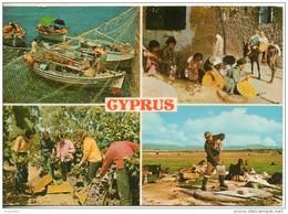Chypre. 4 Vues. Grand Format. Couleur . 1984 - Chypre