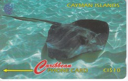 TARJETA DE CAYMAN ISLANDS DE UNA RAYA (FISH-PEZ-POISSON) 94CCIE - Cayman Islands