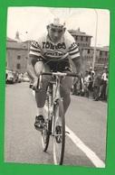 Ciclismo Cyclisme Willy Vanden Berghen Mantova Gara Foto Vélos Bikes - Ciclismo