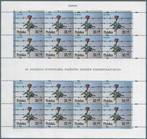 1995 Europa C.E.P.T., Minifogli Polonia, Serie Completa Nuova (**) - Europa-CEPT