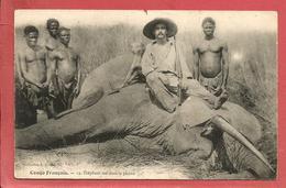 Congo Français Eléphant Tué Dans La Plaine / Chasse - Congo Français - Autres