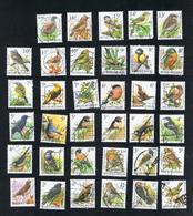 Schöne Umfangreiche Motivsammlung 35 Darstellungen Unterschiedlicher Singvögel Gestempelt O - Passereaux