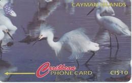 TARJETA DE CAYMAN ISLANDS DE UNA GARZA (BIRD-PAJARO) 13CCIC - Kaaimaneilanden