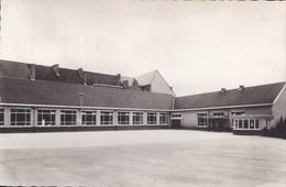 Diepenbeek St. Servatiusschool (stempel: De Schoverik ) - Diepenbeek
