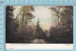 CPa - Tally Ho Coach Route, Muskoka Ontario Canada, On Warwick Bros Card -  Used In 1907 Stamp  Canada 1¢ - Ontario