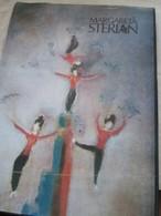 ROMANIA, ARTBOOK, MARGARETA STERIAN, MONOGRAFIA, VIRGIL MOCANU,  BUKURESTI 1990 - Boeken, Tijdschriften, Stripverhalen