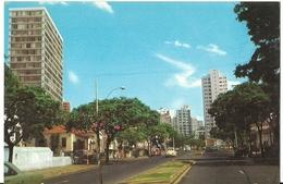 POSTAL BRASIL CAMPINAS AÑO 1980 - São Paulo