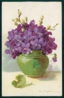 Artist Signed C. Klein Violet Flowers Serie 23-1 Cartolina TC6945 - Klein, Catharina