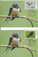 Luxembourg: Nouv. 2018 ** - CM Hirondelles (Timbres Personalisés -Expo Birdpex) - Swallows