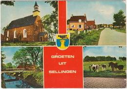 Groeten Uit Sellingen: Vroeggotische Kerk, Hoofdweg, Boerderij, Paarden, Koeien  - (Groningen, Holland) - Netherlands