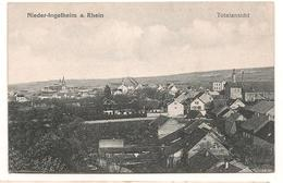 Allemagne - Nieder Ingelheim - Totalansicht  - CPA° - Allemagne