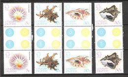 Cayman Islands  1980 Molluscs Of The Sea (I)  Mi 448-451 Gutter Pairs  MNH(**) - Cayman Islands